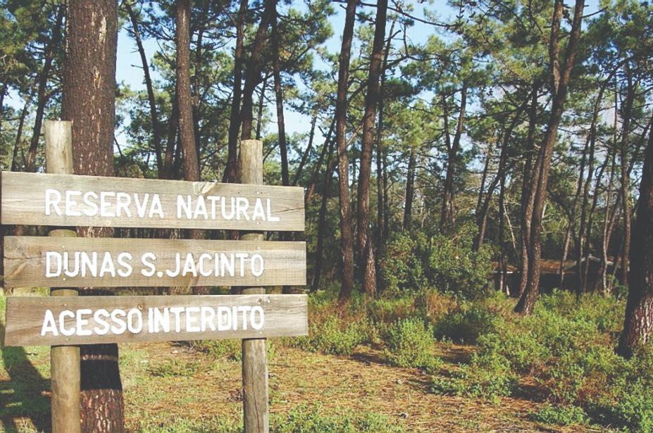 Reserva Dunas São Jacinto